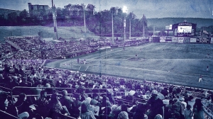 Minor League Clubs Lose Insurance Case Claiming Government CancelledSeason