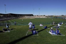 Spring Training Sellouts Among Baseball's Changes as Fans Return toStands