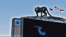 Viral Panthers Clip a 'Milestone in AugmentedReality'